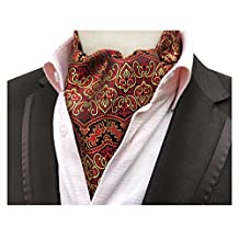 Elfeves Men's Graphic Business Ascot Cravat Jacquard Woven Ties for Husband