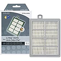Genuine Electrolux Anti-Odor HEPA Filter EL020