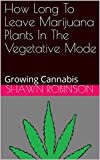 A clear and concise explanation of the duration of time necessary for growing a lush and spectacular marijuana plant. The technique for optimizing ganja plant density is detailed in an easy to understand way. With this understanding of the time neede...