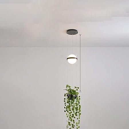 LZRDZSW Bola de Cristal Blanca de la lámpara, Nordic Creativa Restaurante/Pasillo/escaleras/Esquina/Bar/Tienda Verde Planta Decoración de cabecera de la lámpara, Transparentes Redondas Luces: Amazon.es: Hogar