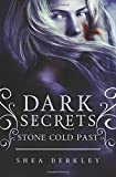 Dark Secrets: Stone Cold Past: A Dark Secret: Stone Cold novel (Volume 2)