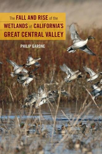 The Fall And Rise Of The Wetlands Of Californias Great Central Valley