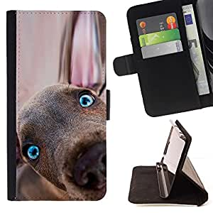 Momo Phone Case / Flip Funda de Cuero Case Cover - Weimaraner del perrito del perro de Vizsla Redbone; - Samsung Galaxy S6 Active G890A