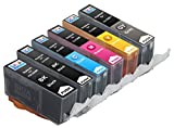 Skia Ink Cartridges ¨ 6 Pack Compatible with Canon 225/226(PGI-225BK CLI-226BK CLI-226C CLI-226M CLI-226Y CLI-226GY) for PIXMA MG6120, PIXMA MG6220, PIXMA MG8120, PIXMA MG812020B, PIXMA MG8220