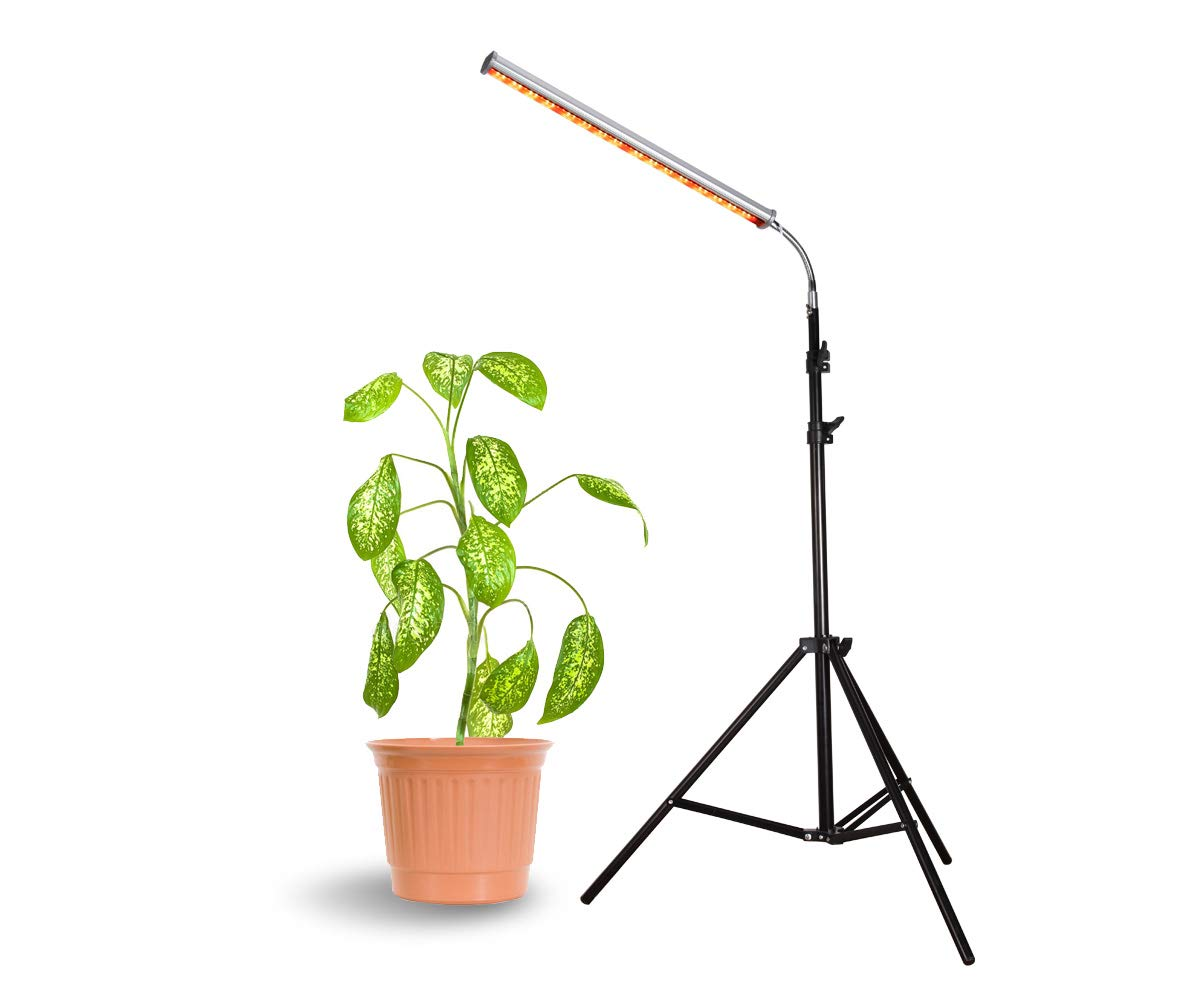Floor Lamp Grow Light, 28W LED Floor Stand Growing Light with Flexible Gooseneck, Warmwhite and Red Light Spectrum for Indoor Plants, Seedling, Hydroponic, Basement Plants to Survive Cold Days by Aceple