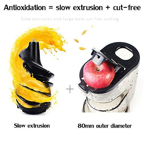 DULPLAY Quiet Slow Speed Masticating juicer,Healthy Fruit and Vegetable 180-watt,Bpa Free Metallic Juicer Machine -red 45x15x17cm(18x6x7inch) by DULPLAY (Image #6)