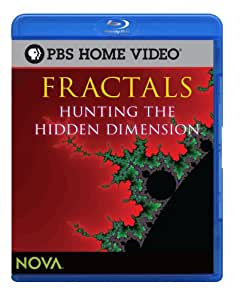 Fractals: Hunting the Hidden Dimension [Blu-ray]