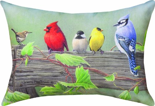 (Manual Climaweave Indoor/Outdoor Decorative Throw Pillow, 18 X 13-Inch, Birds on a Line II)