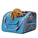 Decoroom Pet Car Seat Carrier Dog Cat Lookout Booster Seat Soft-Sided Foldable Puppy Travel Bag Cyan