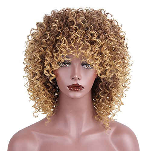 AISI HAIR Synthetic Afro Curly Hair Wigs Brown Blonde Mixed Wig Short Curly Wigs for Black Women
