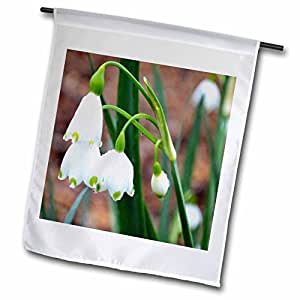 WhiteOak Photography Floral Prints - White Flowers - 12 x 18 inch Garden Flag (fl_44139_1)