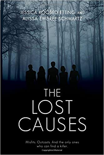 Image result for the lost causes book