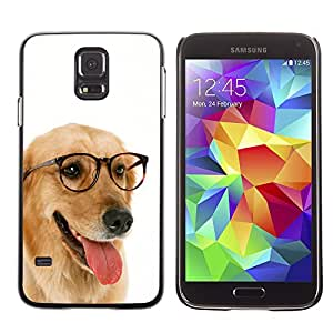 Vortex Accessory Carcasa Protectora Para SAMSUNG GALAXY S5 V G9000 - Labrador Retriever Golden Glasses Dog -