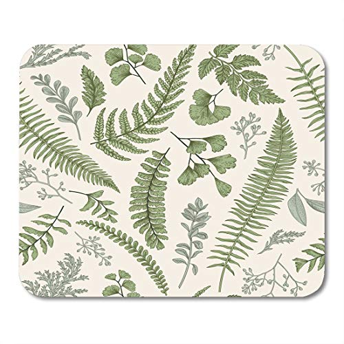 Emvency Mouse Pads Floral Pattern in Vintage Leaves and Herbs Botanical Boxwood Seeded Eucalyptus Fern Maidenhair Mouse pad 9.5