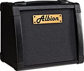 Amazon.com: Albion amplificación AG Series AG10 10 W ...
