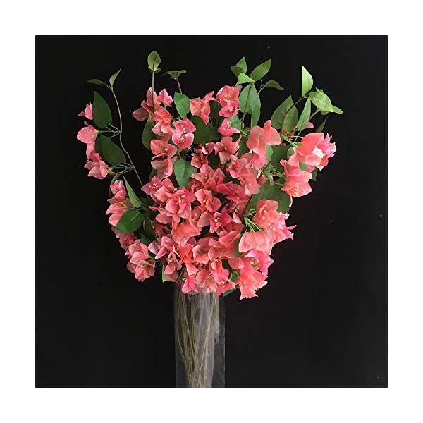 jiumengya 10pcs Silk Bougainvillea Glabra Climbing Bougainvillea spectabilis Flower Artificial Bougainvillea Tree Branches 31.5″ six Colors for Wedding Centerpieces (Pink)