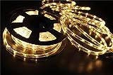 Tools & Hardware : NOVEL HOME TECH 110V 2-Wire Waterproof LED Rope Light Kit for Background Lighting,Decorative Lighting,Outdoor Decorative Lighting,Christmas Lighting,Trees,Bridges,Eaves (50FT/15M, Warm White)