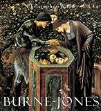 Burne Jones by Christopher Wood (1999-06-10)