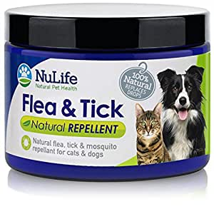 Amazon Com Natural Flea Control For Dogs And Cats