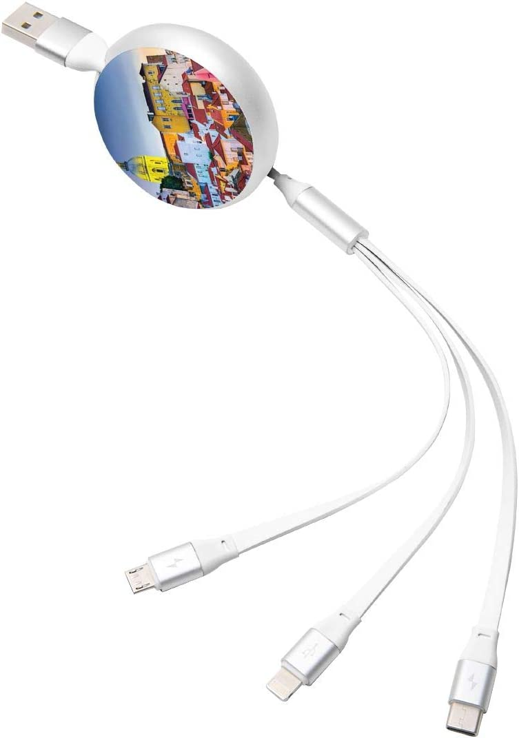 3 in 1 Retractable USB Charging Cable The City with The National Pantheon Fast Charging Print Charging Cord Adapter Compatible with Cell Phones Tablets Universal Use