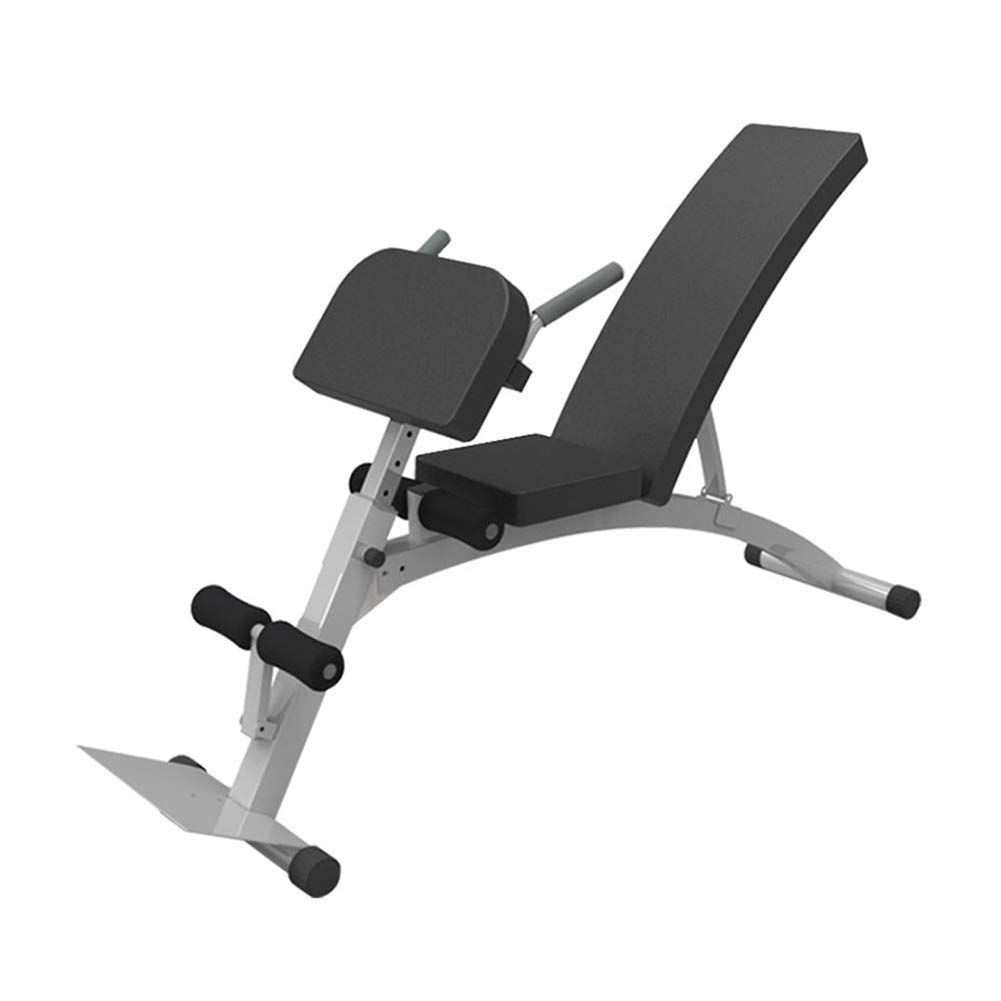 MICROSCOPE AA Sit Up Bench Fitness Training Banco de pesas para un ...