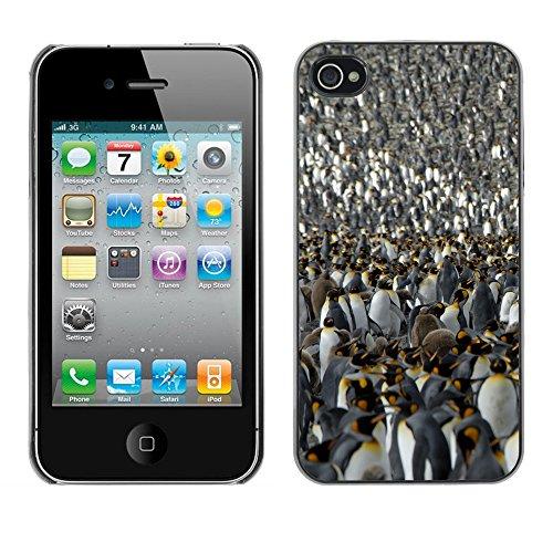 Premio Sottile Slim Cassa Custodia Case Cover Shell // V00001804 Penguin roi // Apple iPhone 4 4S 4G