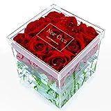 NEWCREA Acrylic Rose Flower Box, Water Holder Flower Pot,Wedding Flower Gift Box,9 Holes ...