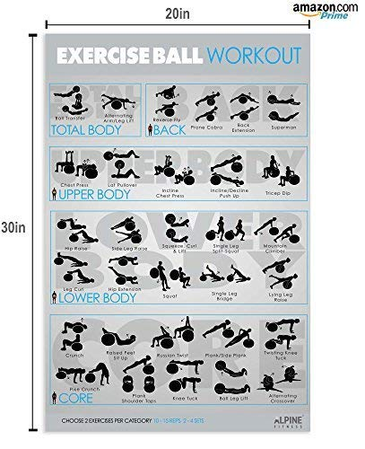 "7 Exercise & Fitness Posters | 30""x20"" Large Laminated Gym Planner Charts  for Great Workouts – Guide to Build Strength (Stretch, Bodyweight, Ball,"