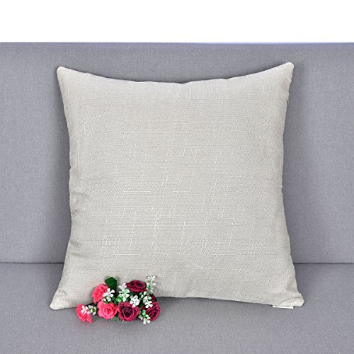 Bamboo Decorative Pillow (Natus Weaver Decorative Slub Lined Linen Square Euro Throw Pillow Case Sham Cushion Cover for Living Room , 18 x 18 inch Light Grey)