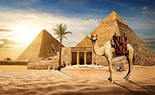 Camel Egyptian (Leowefowa 7X5FT Vinyl Photography Backdrop Egyptian Pyramids Camel Coconut Tree Blue Sky White Cloud Nature Culture Historical Desert Background Kids Children Adults Photo Studio Props)