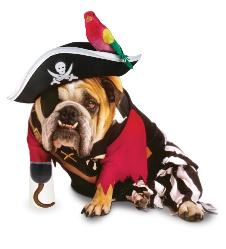 Zelda Pirate Pet Pet Costume - Small