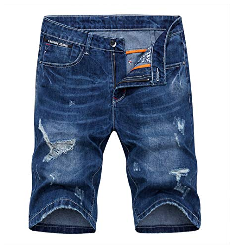 Men's Denim Shorts Jeans Pants 5 Pocket Casual Ripped Distressed Slim Fit for Men (8193, 29) ()
