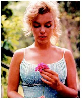 "NEW MARILYN MONROE WITH FLOWER POSTER     24/"" X 36/"""
