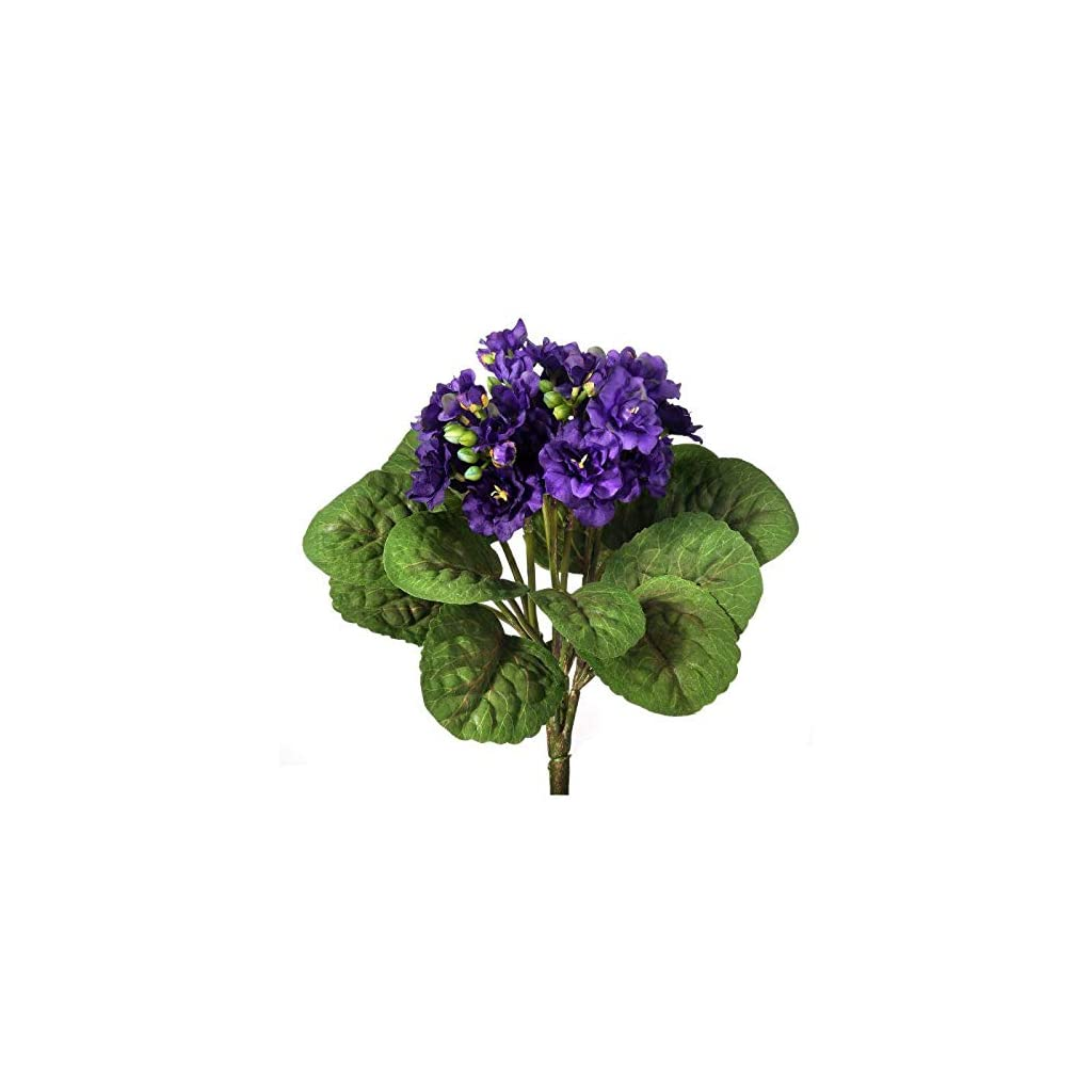 Silk-African-Violet-Plant-in-Purple-12-Tall