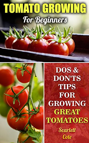 Tomato Growing For Beginners: Dos & Don'ts Tips For Growing Great Tomatoes by [Cole,  Scarlett]