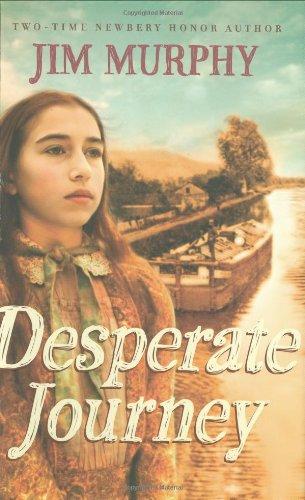 Desperate Journey PDF