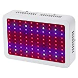Dimgogo 1000W Double Chips LED Grow Light Full Spectrum Grow Lamp for Greenhouse Hydroponic Indoor Plants Veg and Flower,(10w Leds)