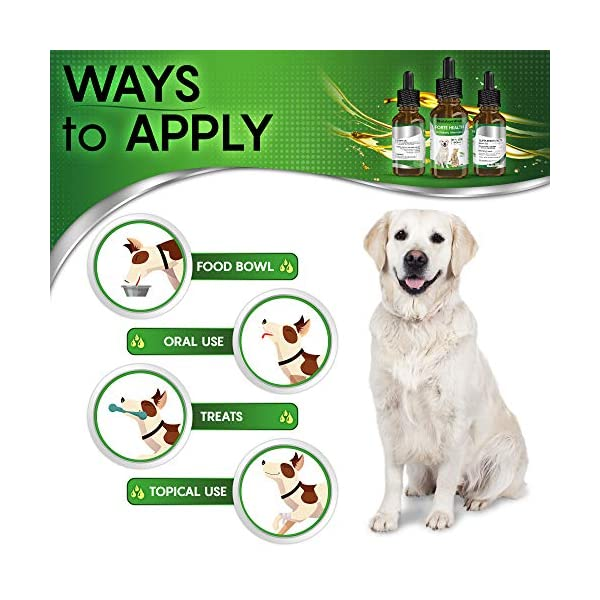 Natural ANTIBIOTICS for Dogs / ANTIBIOTICS Alternative for Pets/ Kennel Cough Medicine for Dogs / UTI Treatment / ANTIBIOTICS for Cats 6