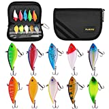 PLUSINNO 10pcs Fishing Lures Jerkbait Minnow Bass Crankbait Kit with Portable Carry Bag, Topwater Popper Lure with Treble Hook Life-Like Swimbait Lure for Bass Trout Walleye Redfish