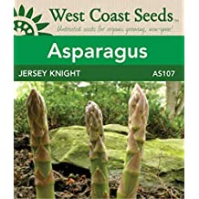 Asparagus Seeds - Jersey Knight F1