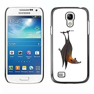 Ihec Tech Bat lindo blanco frío gris Animal / Funda Case back Cover guard / for Samsung Galaxy S4 Mini i9190