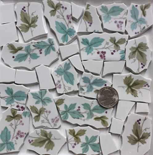 Broken China Mosaic Tile Art Supply for Crafts ~ Purple Grapes & Aqua Green Leaf Tiles (T#A182)