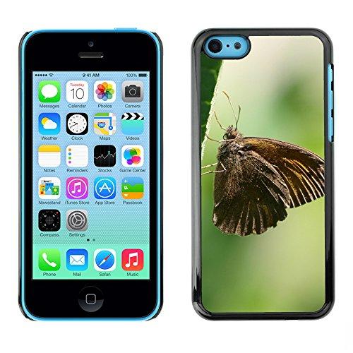Premio Sottile Slim Cassa Custodia Case Cover Shell // F00018451 Brown papillon // Apple iPhone 5C