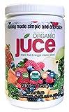 vegetable juice organic - Terra Kai Organics Júce Super Fruit and Veggie Blend Drink, 8.01-Ounce (Garden Berry)