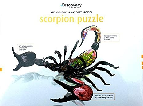 Amazon Famemaster 4d Scorpion Anatomy Model By Famemaster Toys