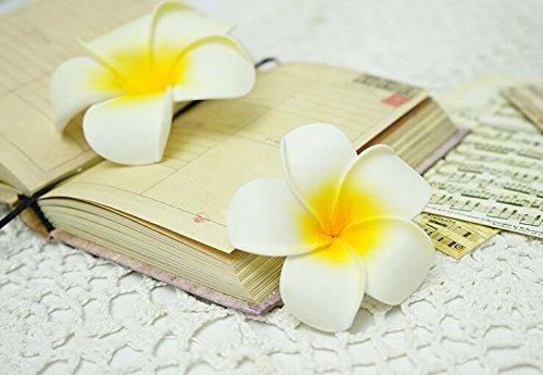 SallyFashion-Foam-Artificial-Plumeria-Rubra-Flower-Heads-Frangipani-Wedding-Decoration-Flowers-Plumeria-Flower-HeadHawaiian-Plumeria-Foam-Flower-2750-pcs