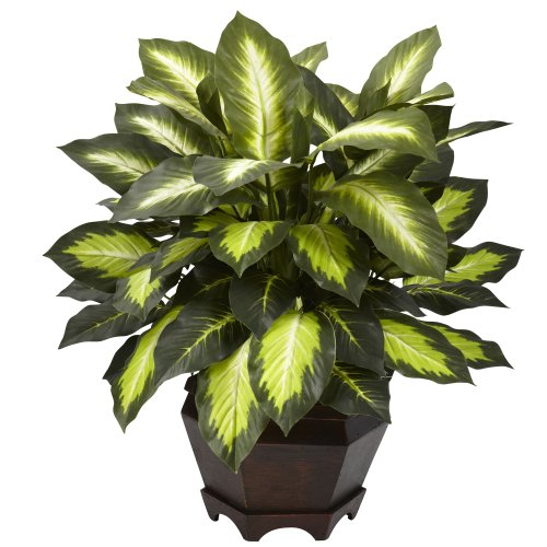 (Nearly Natural 6720 Triple Golden Dieffenbachia Plant with Wood Vase, Green )