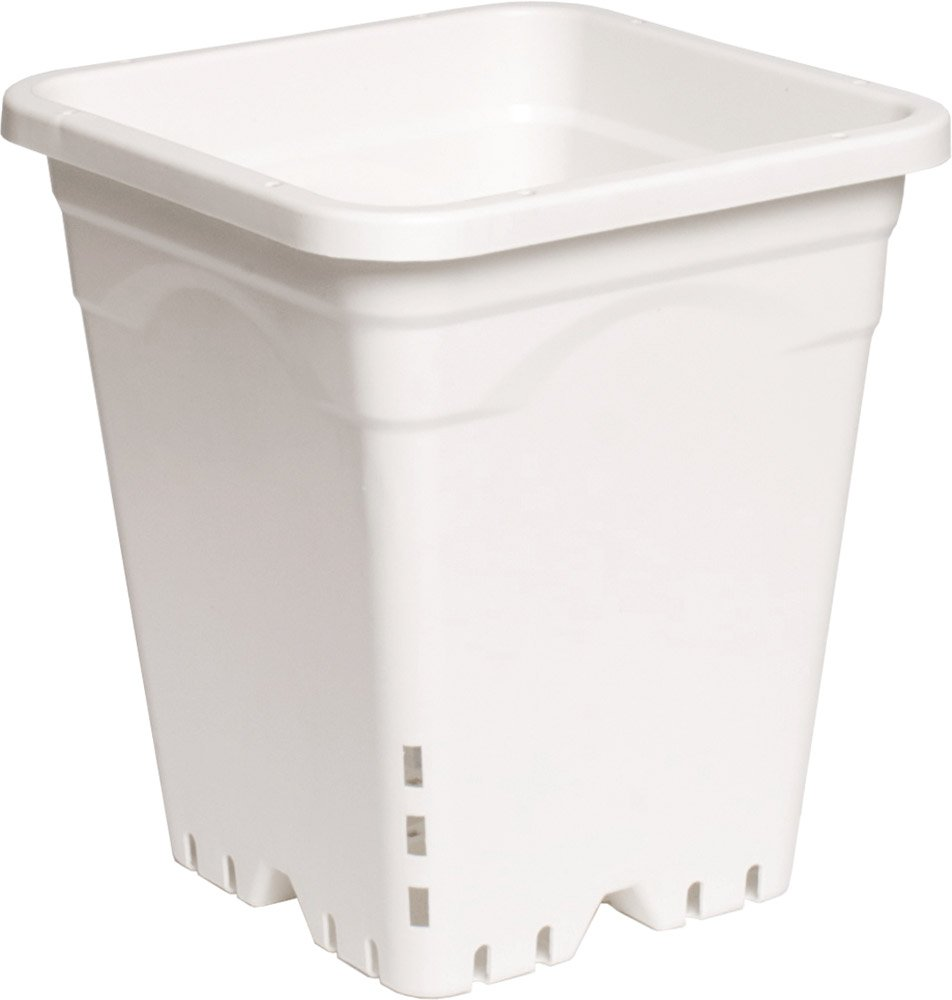 Active Aqua HG9X9SW 9 x9 White, 10 Tall, Pack of 24 Square Pot, 9 X 9