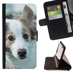 Momo Phone Case / Flip Funda de Cuero Case Cover - Border collie Husky Corgi perro de mascota canina; - MOTOROLA MOTO X PLAY XT1562