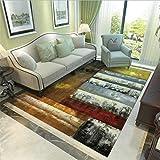 Living Room/Bedroom Carpet Printed Large Carpets Soft Antiskid Abstract Floor Mat Carpet Bathroom Rugs